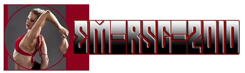 em-rsg-2010.de